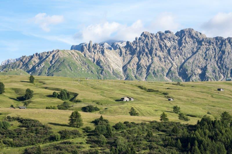 Alpejscy paśniki Dolomit Alpe Di Siusi, Południowy Tyrol fotografia stock