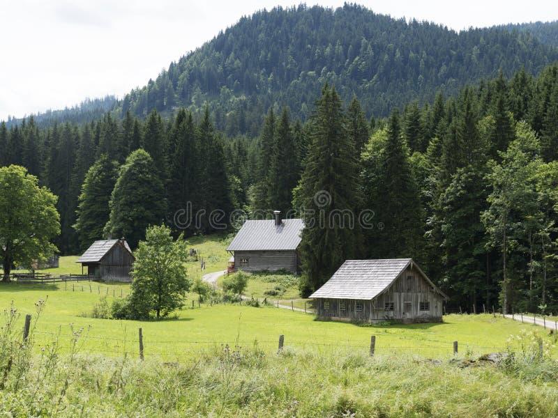 Alpejska halna średniowieczna wioska Drewniane cembrować chałupy zdjęcia royalty free