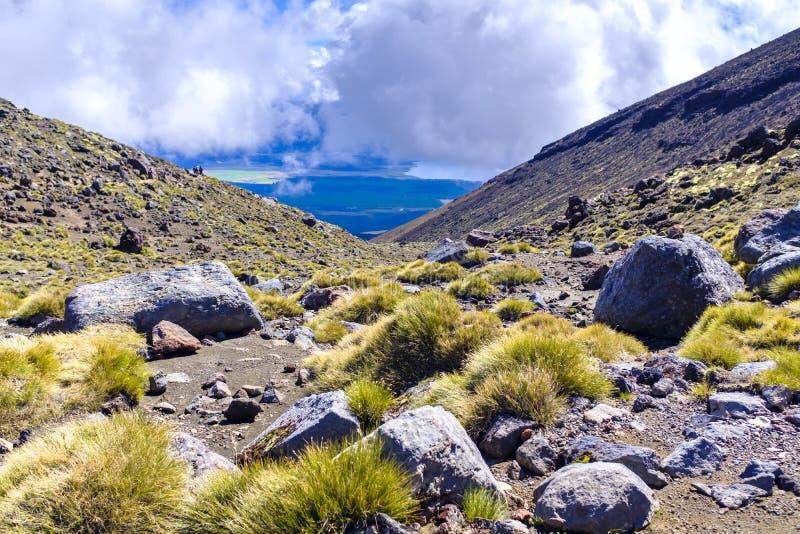 Alpejski środowisko Tongariro park narodowy zdjęcie royalty free