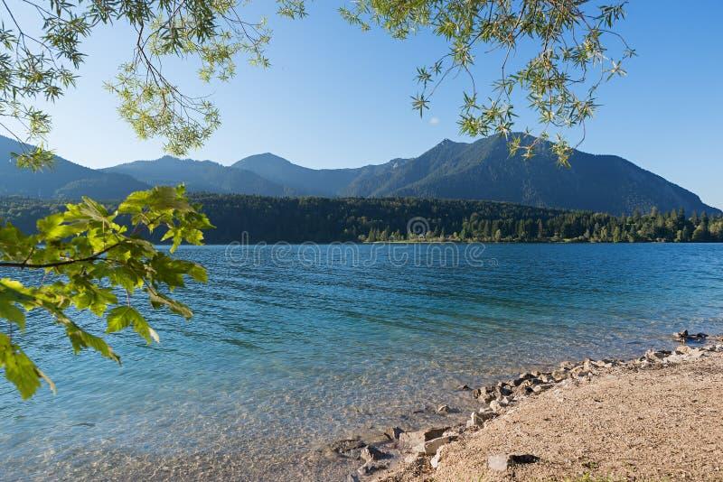 Alpejski dopłynięcia i surfingu jeziorny walchensee w lecie obrazy stock