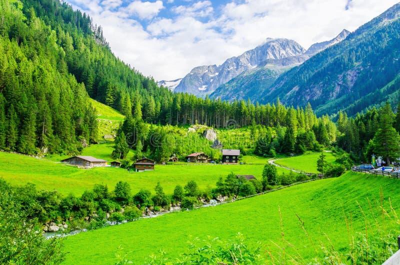 Alpejski krajobraz z zielonymi łąkami, Alps, Austria zdjęcia stock