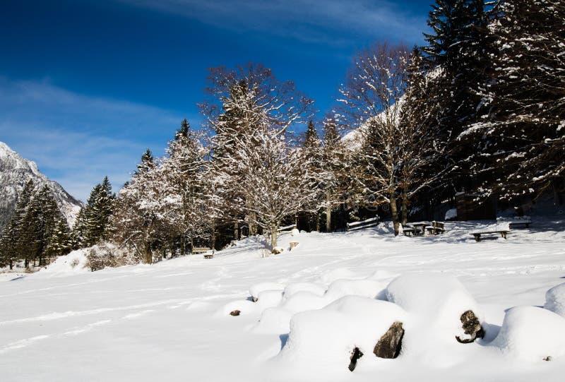 Alpejski przełęcz zimy scenerii krajobraz Jeziorem Lago Del Predil w pogodnym niebieskim niebie w opadzie śniegu, Italy zdjęcia stock