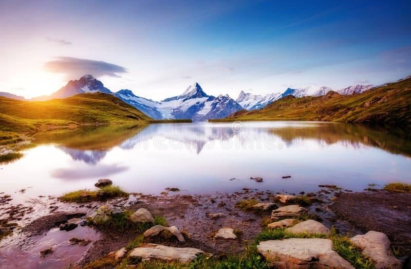 Alpejski widok Mt Schreckhorn i Wetterhorn Lokacja Bach obraz stock