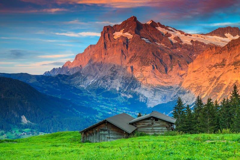 Alpejski wiejski krajobraz z starą drewnianą stajnią, Grindelwald, Szwajcaria, Europa zdjęcia royalty free