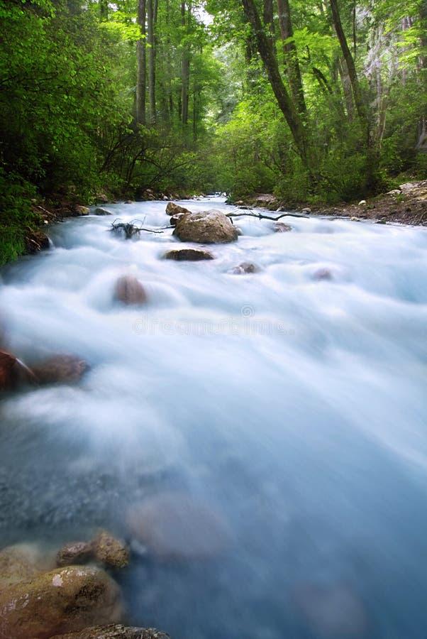 alpen bäcksolnedgången arkivfoto