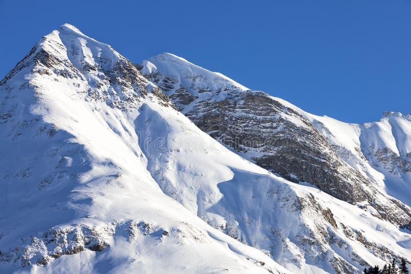 Alpen, bergketen in de sneeuw, de winter wordt behandeld die royalty-vrije stock foto's