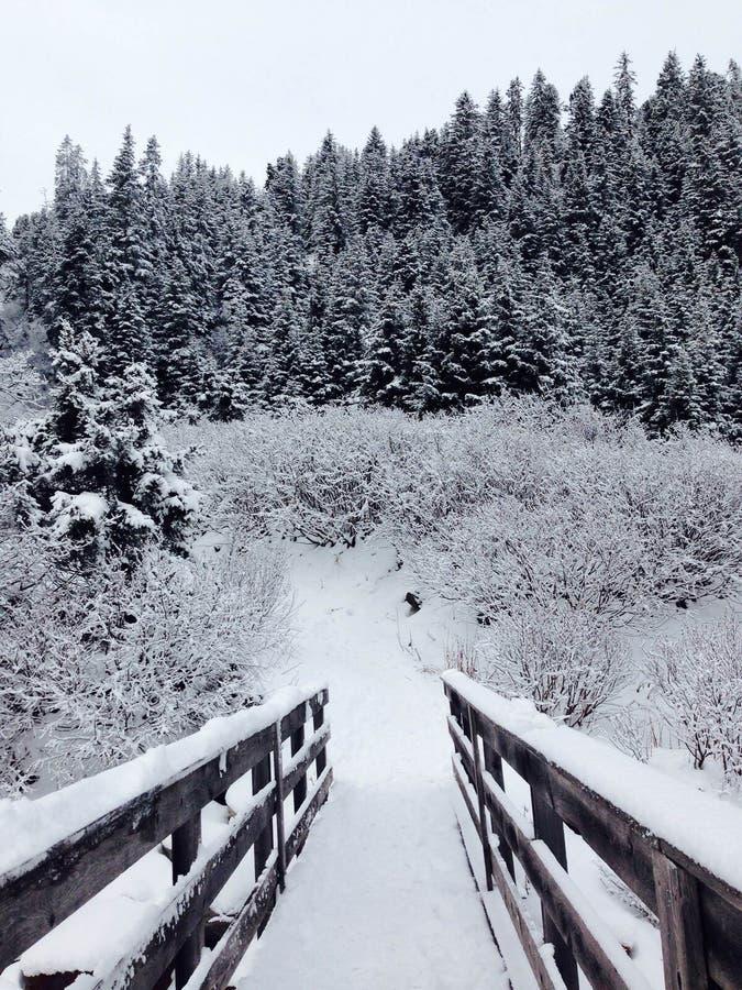 Alpen, Weihnachten, Österreich, Berg, Skifahren, Schnee, Sylvesterabende, Brücke stockbilder