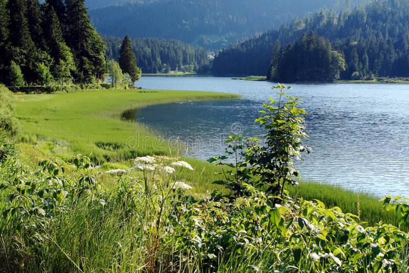 alpes巴伐利亚湖 库存图片