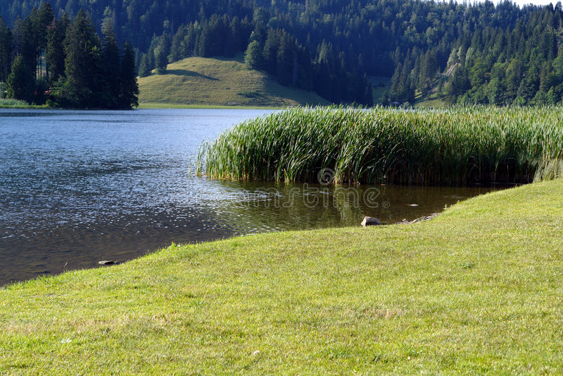alpes湖spitzingsee 免版税库存照片