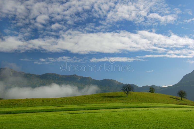 Alpes fotografia stock