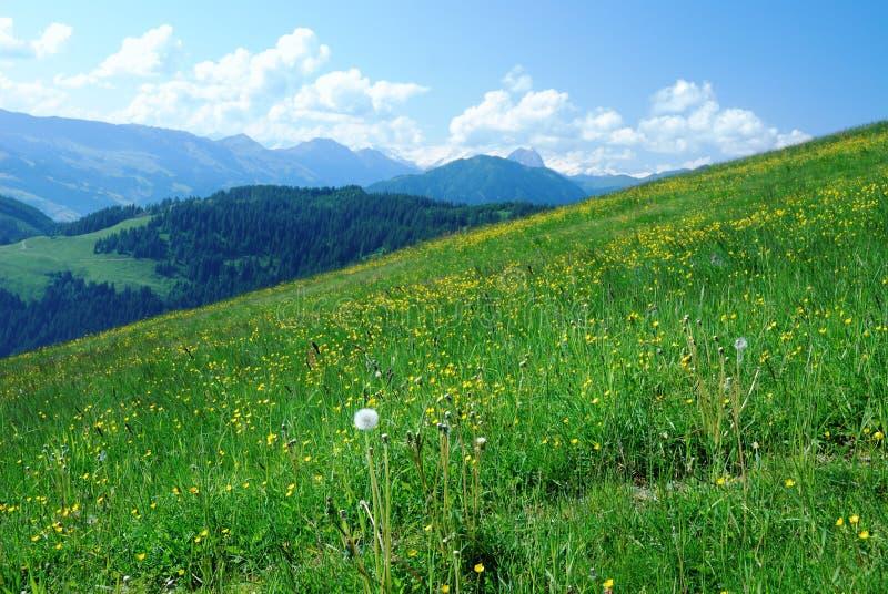 Alpes photo stock