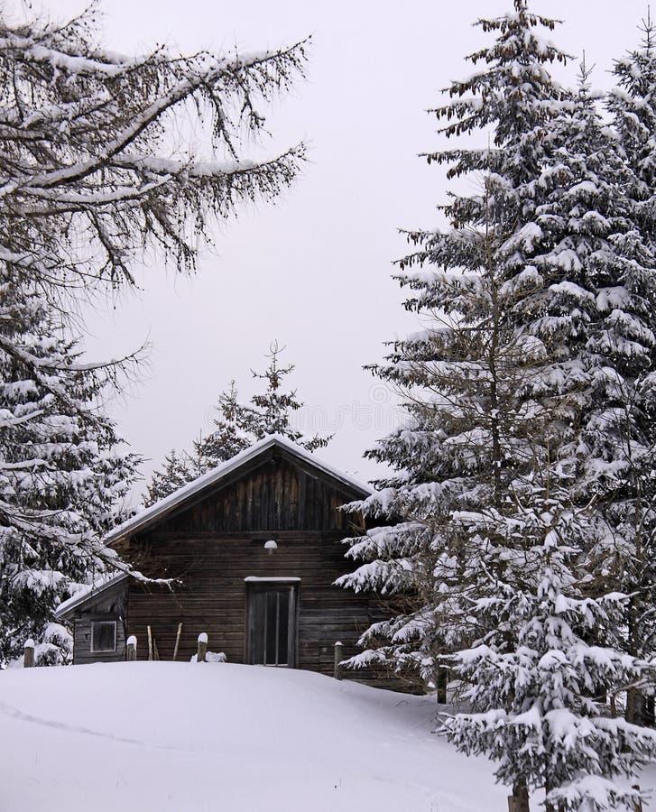 Alpes autrichiennes, cabine en bois en hiver avec la neige photographie stock libre de droits