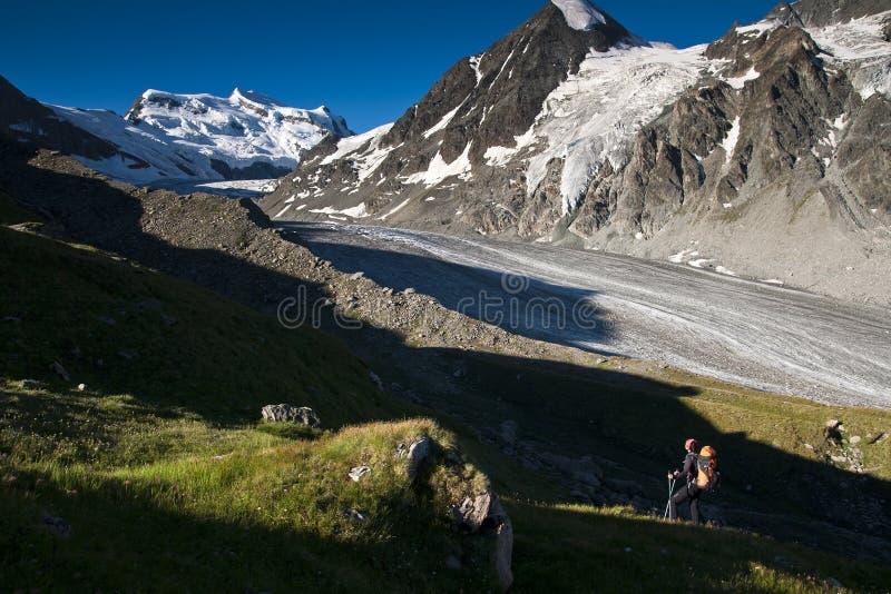 Alpes de Wallis do verão fotografia de stock royalty free