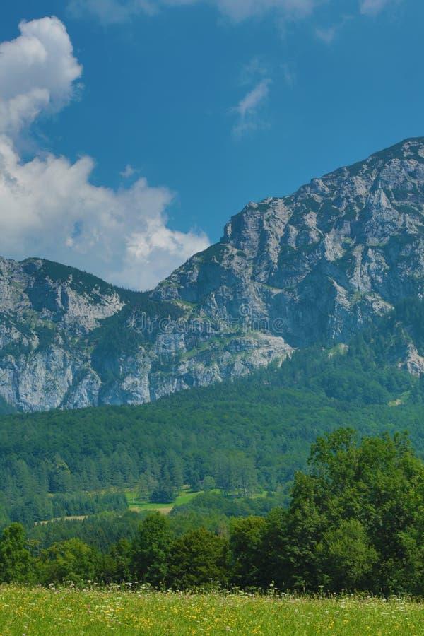 Alpes Italie de montagne photo libre de droits
