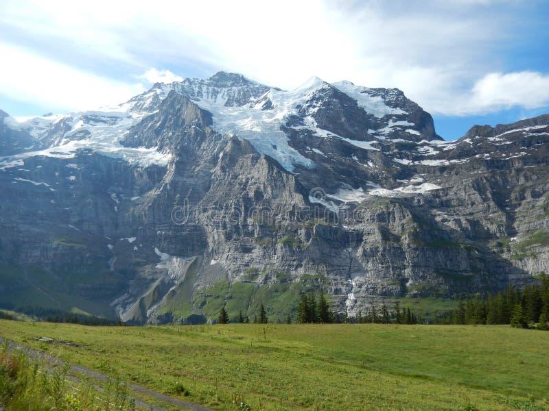 Alpes Suizos 免版税图库摄影