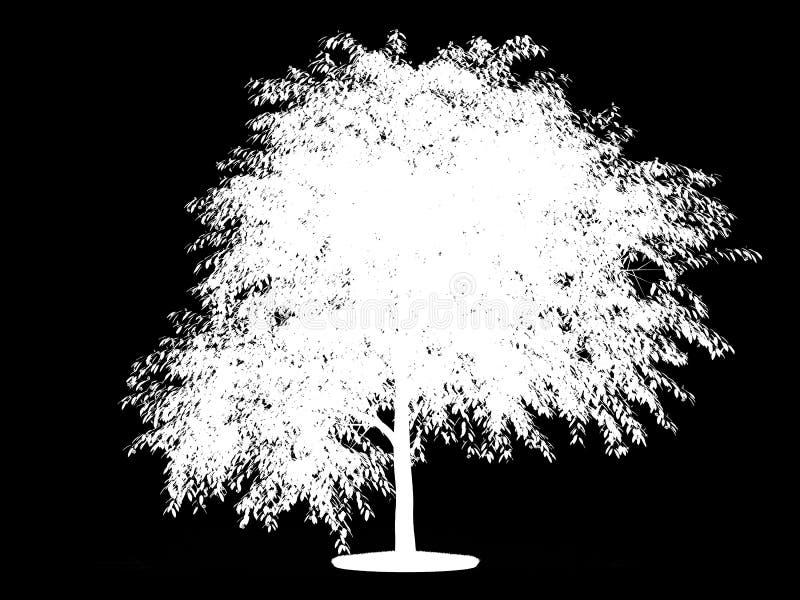 Alpha- kanaal voor tot bloei gekomen kersenboom royalty-vrije illustratie