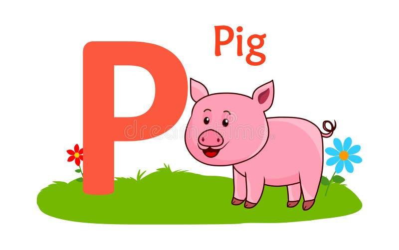 alphabet animal letter p P для свиньи иллюстрация вектора