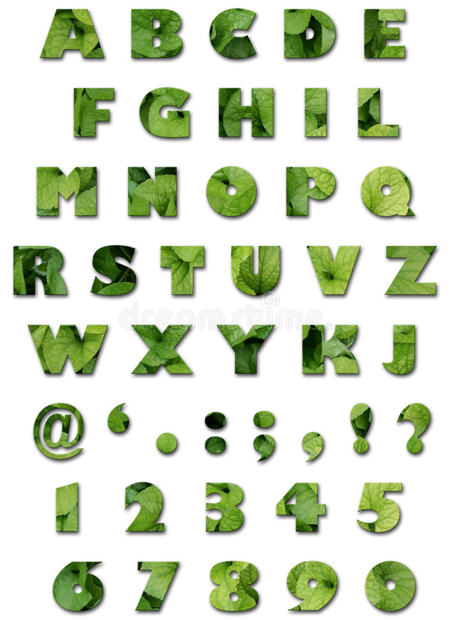 Alphabet - Blatt-Beschaffenheit - grüner Sommer
