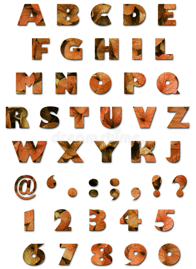 Alphabet - Blatt-Beschaffenheit - Orange Herbst Lizenzfreie Stockfotos