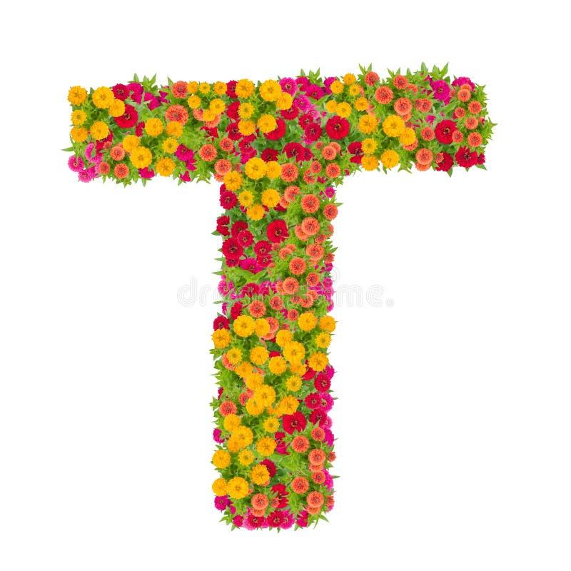 alphabet de la lettre t fait partir de la fleur de zinnia image stock image du lame. Black Bedroom Furniture Sets. Home Design Ideas