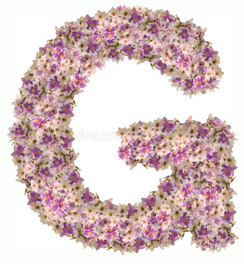 Alphabet de lettre avec le type de concept d'ABC de fleur comme logo photos libres de droits