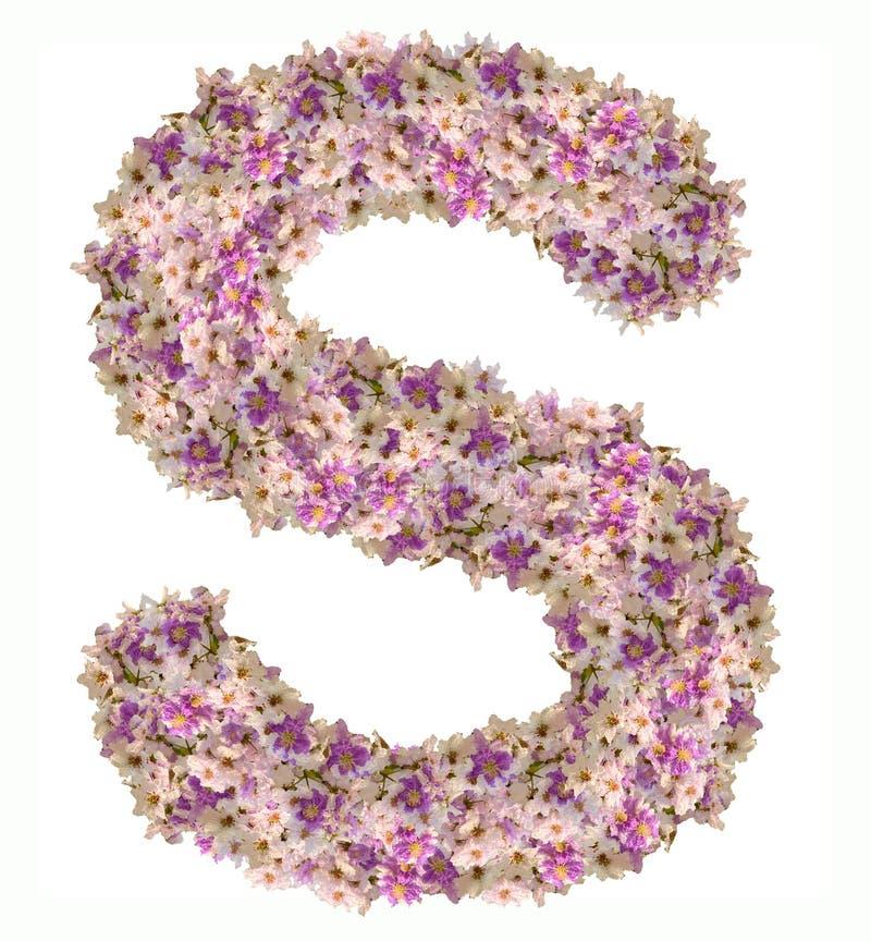 Alphabet de lettre avec le type de concept d'ABC de fleur comme logo photographie stock libre de droits