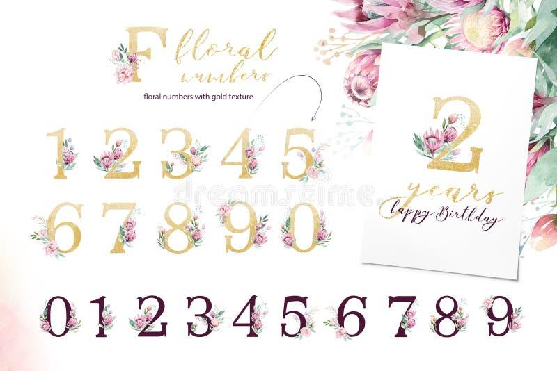 Alphabet de lettre de scintillement d'or Polices alphabétiques d'or d'isolement et nombres sur le fond blanc Texte l'épousant flo images stock