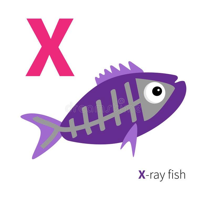 Alphabet de zoo de poissons de rayon X de la lettre X ABC anglais avec des cartes d'éducation d'animaux pour la conception plate  illustration de vecteur