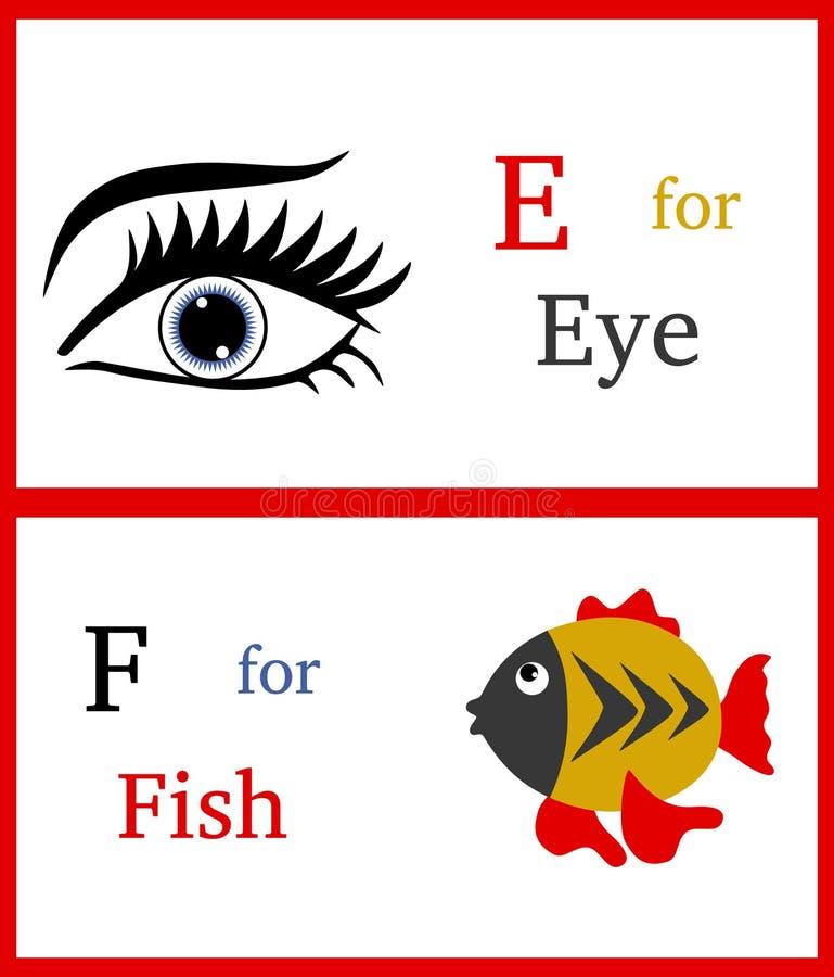 Alphabet E et F illustration stock