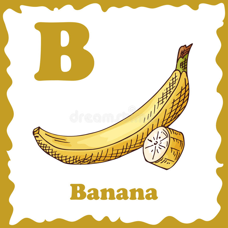 Alphabet For Kids With Fruits. Healthy Letter Abc B-Banana