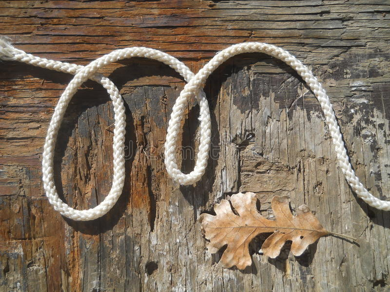 Alphabet letter m rustic western rope stock photo image of linked download alphabet letter m rustic western rope stock photo image of linked cowgirl thecheapjerseys Images