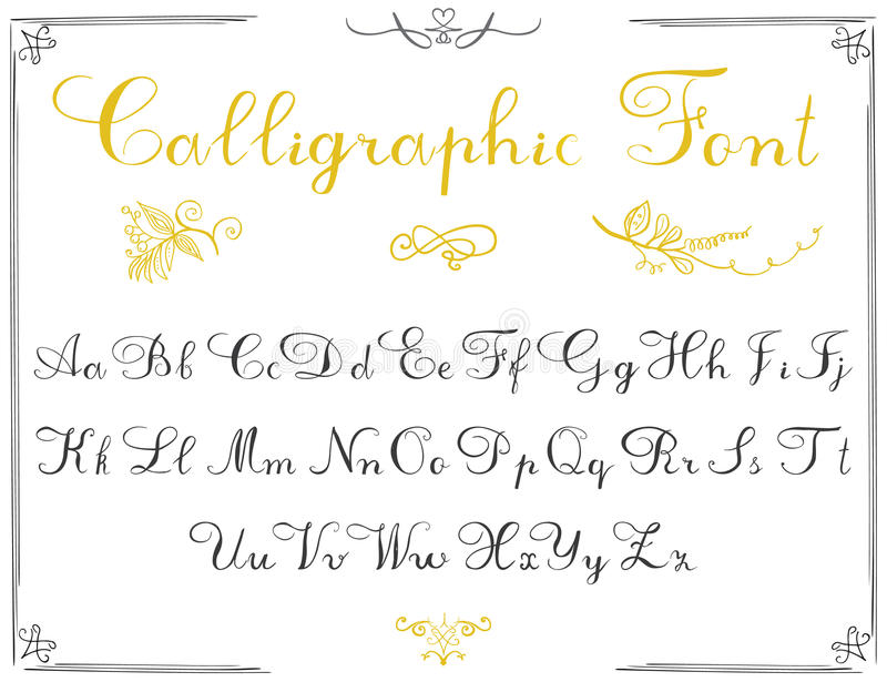 Alphabet letters, hand drawn calligraphy font. Vector alphabet. Hand written letters of the alphabet and decoration elements isola vector illustration