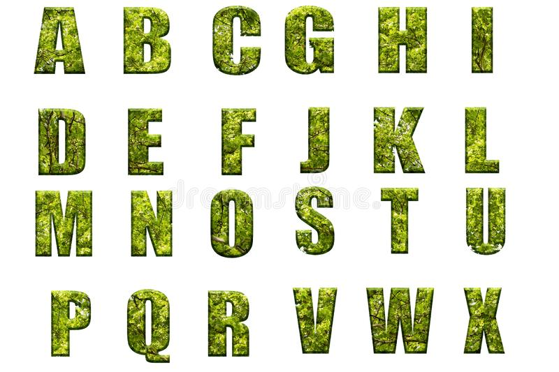 Letters of the alphabet from green leaves of trees. Alphabet letters from leaves and tree branch.Volumetric letters from a natural texture stock photos