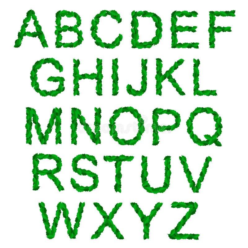 Alphabet mit grünen heiligen Blättern für Weihnachten lizenzfreie abbildung