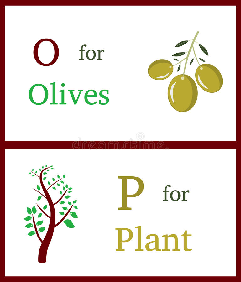 Alphabet O and P. With illustrations of olives and plant useful for kids learning. Visit: https://graphixandcode.com royalty free illustration