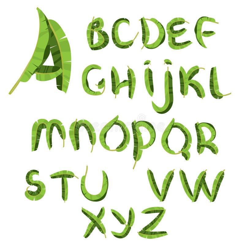 Alphabet tropical fait de palmettes de banane ABC vert tiré par la main de paradice Lettres naturelles d'été Conception de vecteu illustration libre de droits
