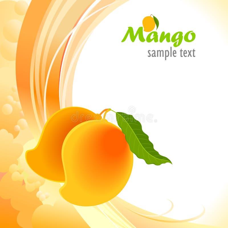 'Alphonso - mango' - il re dei manghi illustrazione vettoriale