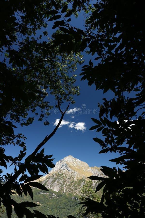 Alpi Apuane, Forte dei Marmi, Lucca, Tosc?nia, It?lia Monte Pania imagem de stock royalty free