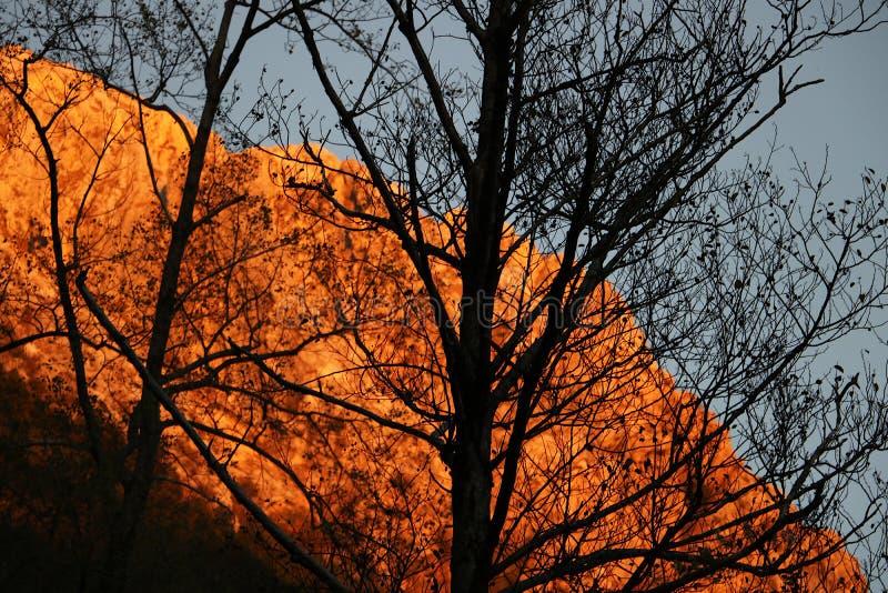 Alpi Apuane, Massa Carrara, Tosc?nia, It?lia Montanha iluminada foto de stock royalty free