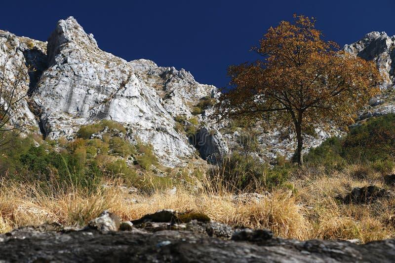 Alpi Apuane, Massa Carrara, Tosc?nia, It?lia Paisagem com montagem foto de stock