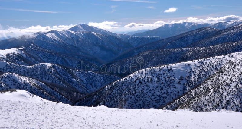 Alpi australiane fotografia stock libera da diritti