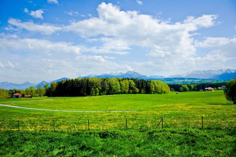 Alpi, Austria Immagine Stock