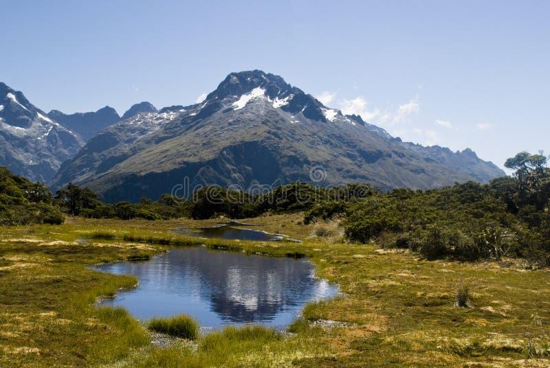 Alpi del sud fotografie stock libere da diritti