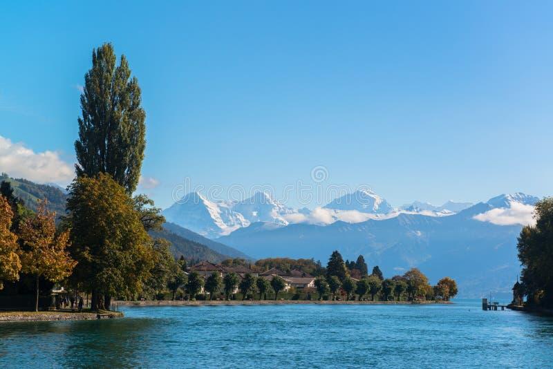 Alpi e lago Thun vicino alla città di Spiez in Svizzera, Europa fotografia stock