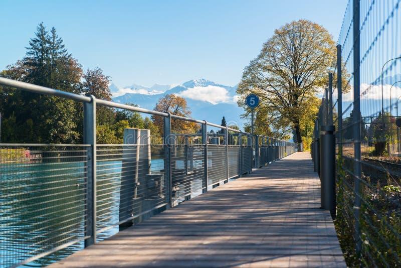 Alpi e lago Thun vicino a Spiez immagini stock libere da diritti