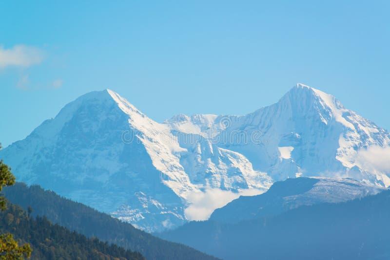Alpi e lago Thun vicino a Spiez immagine stock libera da diritti
