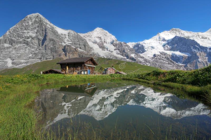 Alpi Svizzera di Eiger, di Monch & di Jungfrau Bernese fotografia stock libera da diritti