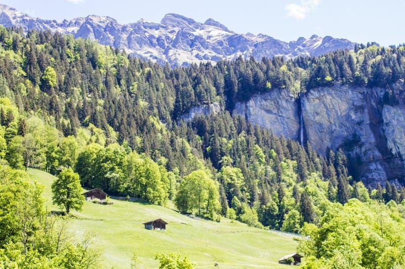 Alpi svizzere Montagne alpine Paesaggio della montagna Foto turistica Sorgente fotografia stock libera da diritti