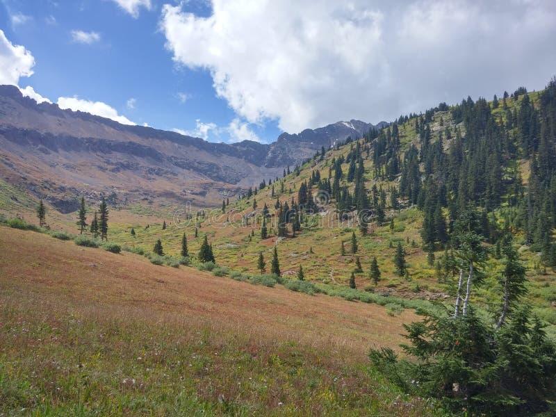 Alpien Groen stock fotografie