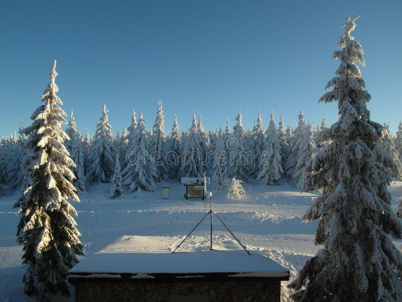 Alpien landschap in de winter onder vers sneeuwende sneeuw stock foto